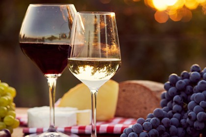 Your Go-To Wine Guide